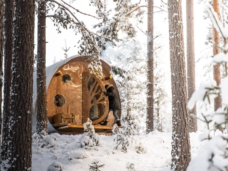 Modern Pod Rental with Wood-Burning Stove for a Woodland Vacation near Falun, Sweden